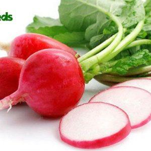 hạt giống củ cải đỏ