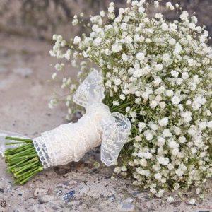 Hạt giống hoa ngàn sao trắng