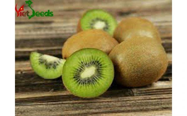 hạt giống kiwi